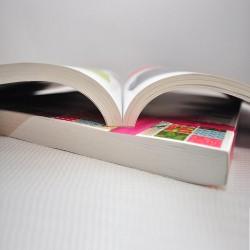 Βιβλίο 29Χ42 (A3) αυθημερόν